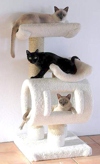 Build homemade cat tree plans diy pdf fine woodworking for Cat tree blueprints