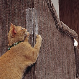 Stop Cat Scratching Cat Towers Trees Condos And Furniture